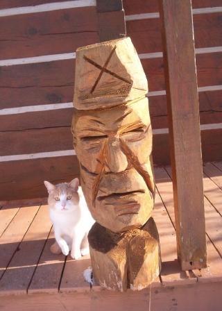 headwithcat