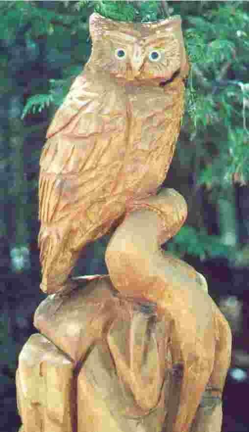 horned_owl_2