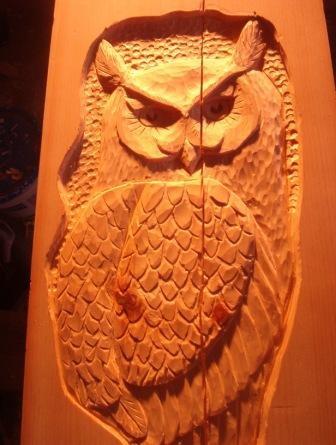 owls 001